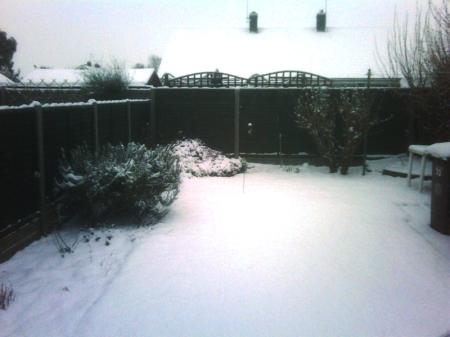 Snow... Parr